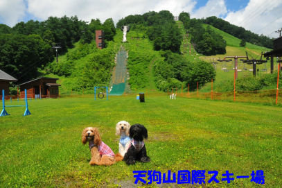 2010.7.17 天狗山