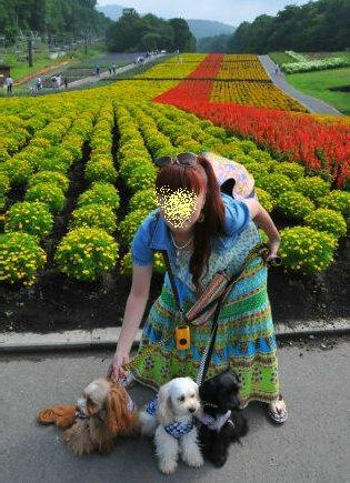 2010.8.1ママとお花と~
