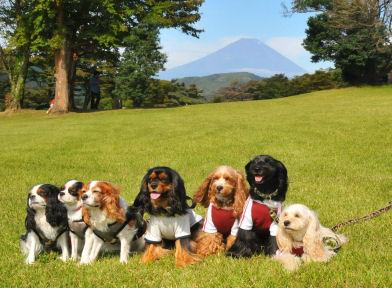 2010.10.3富士山をバックに