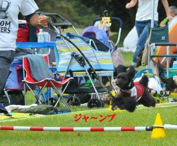 2010.10.3なっちゅジャンプ~