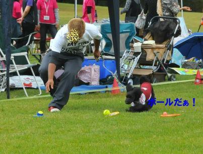 2010.10.3ボール♪
