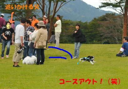 2010.10.3アンジー逃走