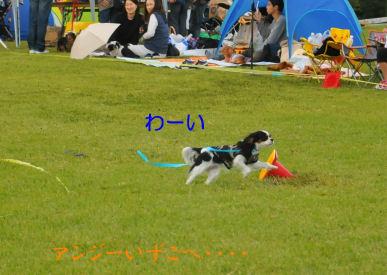2010.10.3わーい