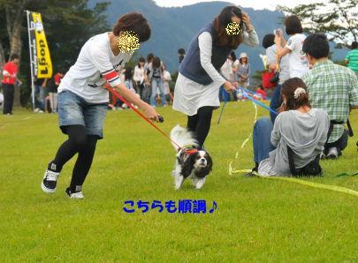 2010.10.3レノ順調