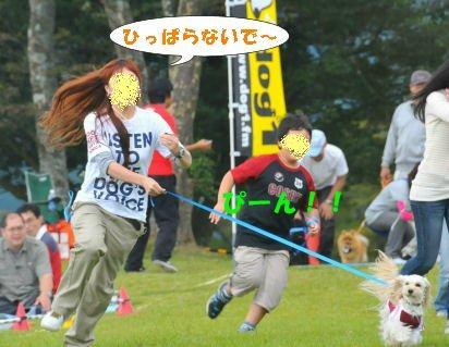 2010.10.3ひっぱるなー