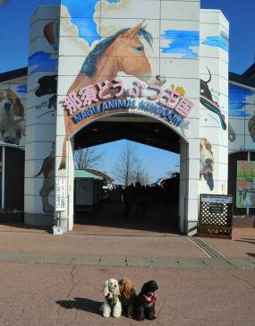 2010.11.21那須動物王国