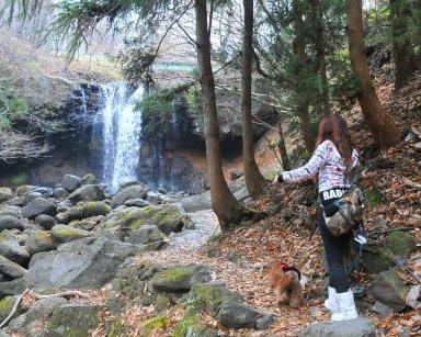 2010.11.22滝だね~