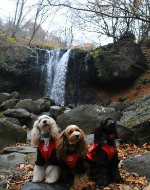 2010.11.22滝と一緒に