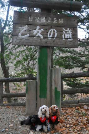 2010.11.22 女神の滝