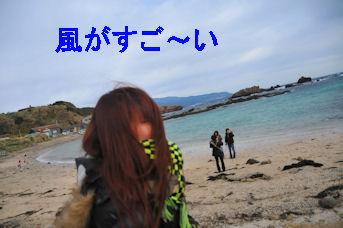 2011.1.3風つよいっ
