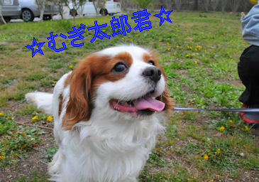 2011.5.3mugi ちゃん
