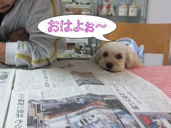 2011.3.21おはよ~
