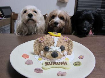2011.3.15ケーキ