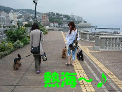 2010.6.11熱海~