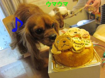 2011.4.2主役タイム