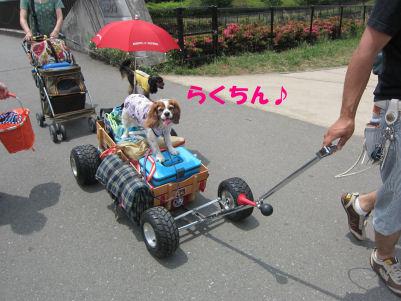 2010.6.13こにょ