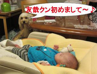 2011.4.2初めまして