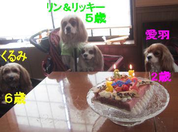 2011.4.7主役たち