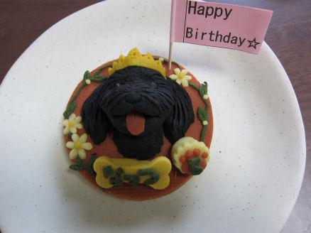 ロビナのケーキ2010.6.22