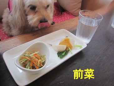 2011.5.1前菜
