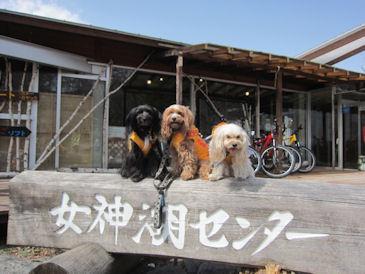 2011.5.4女神湖