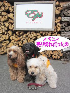 2011.5.4パンうりきれー