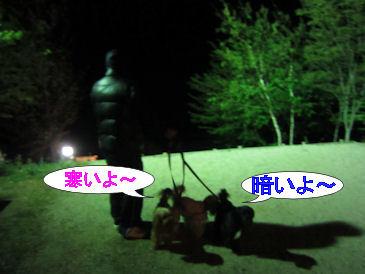 2011.5.5寒い~