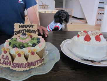 2010.7.11 ケーキが2つ!