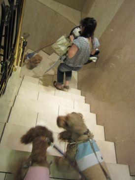 2010.7.12階段
