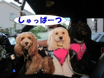 2010.7.17しゅっぱーつ