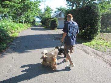 2010.7.19朝散歩