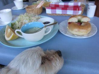 2010.7.19朝ご飯