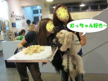 2010.7.31すきすきー