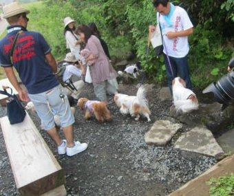 2010.8.1かわー