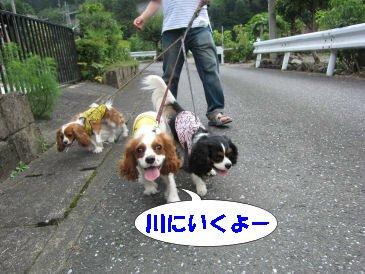 2010.8.22川に行くよ~