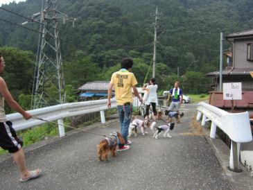 2010.8.22川にGO!