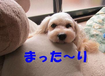 2010.9.3まった~り