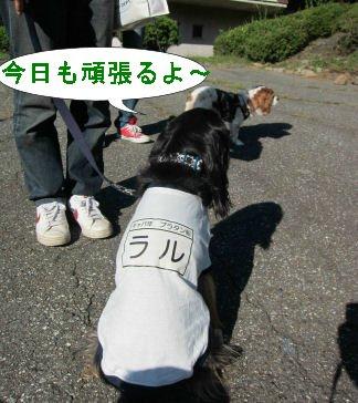 2010.10.3ラル体操着