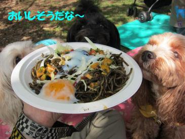 2010.10.16おしょくじ~