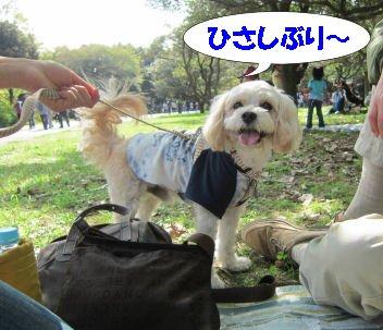 2010.10.16うぃーちゃん