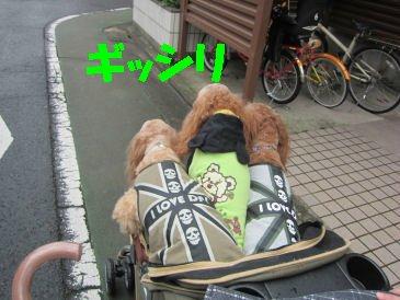 2010.10.20ぎっしり