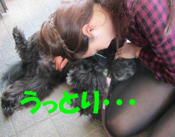 2010.10.20うっとり~