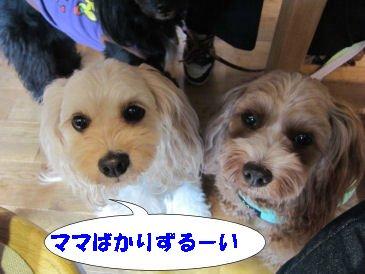 2010.10.29ズルイ~