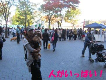 2010.11.3ひといっぱい