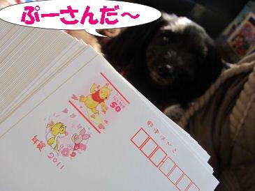 2010.11.11ぷーさんだね~