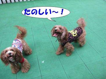 2010.11.6楽しい!!