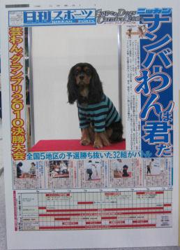 2010.11.14新聞ラル