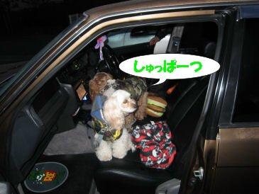 2010.11.21出発!!