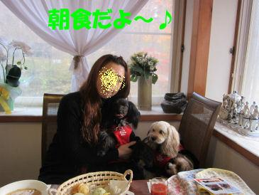 2010.11.22朝食タイム