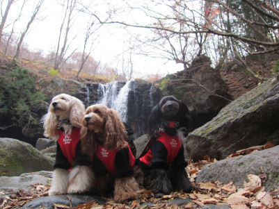 2010.11.22滝と一緒に2